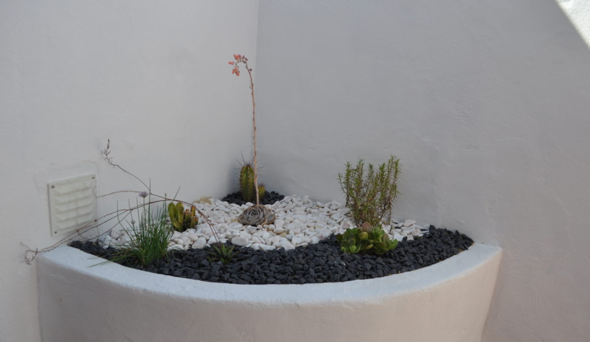 Apartment 4 people – N°12 Garden view